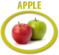 apple juice concentrate usa
