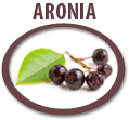 aronia juice concentrate usa