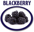 blackberry juice concentrate usa