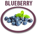 blueberry juice concentrate usa