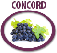 concord grape juice concentrate usa