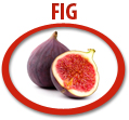 fig juice concentrate usa
