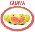 guava juice concentrate usa