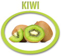 kiwi juice concentrate usa