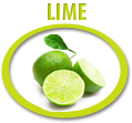 lime juice concentrate usa