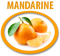 mandarine juice concentrate usa