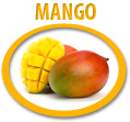 mango juice concentrate usa