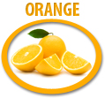 orange juice concentrate usa