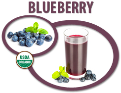 how to make blueberry juice concentrate