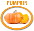 pumpkin puree concentrate usa