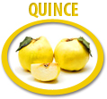 quince juice concentrate usa