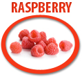 raspberry juice concentrate usa