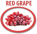 red grape juice concentrate usa