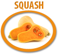 squash puree concentrate usa