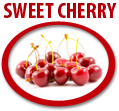 sweet cherry juice concentrate usa