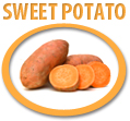 sweet potato puree concentrate usa