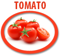 tomato juice concentrate usa