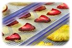 organic dried fruits usa