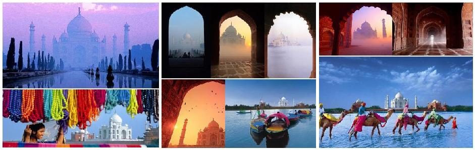 Tours from Delhi