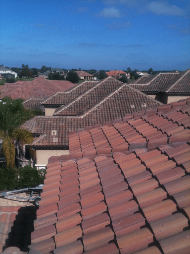 Tile roof inspection