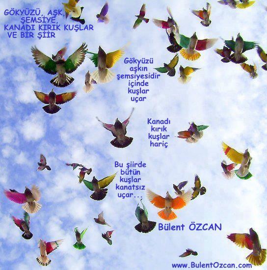 Gökyüzü, Aşk, Şemsiye, Kanadı Kırık Kuşlar Ve Bir Şiir - Bülent Özcan